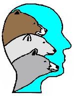 BearWise